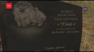 «Особая тема»: кладбища домашних животных