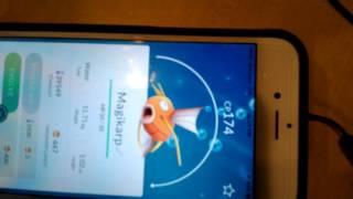 WORLDS HIGHEST EVER CP GYARADOS !| Pokemon Go | MAGIKARP EVOLVE | SUPER SAIYAN