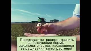 В России внесен законопроект позволяющий выращивать наркотические растения.