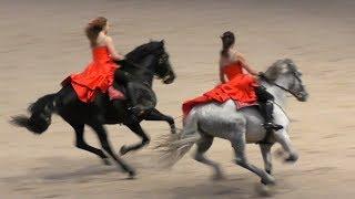 АНДАЛУЗЫ: танец, выездка, галоп! #ИППОсфера 2019 Андалузская порода лошадей Andalusian horse P.R.E