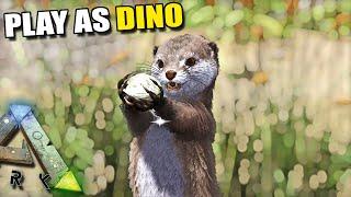 we make a little otter den play as dino ark survival evolved