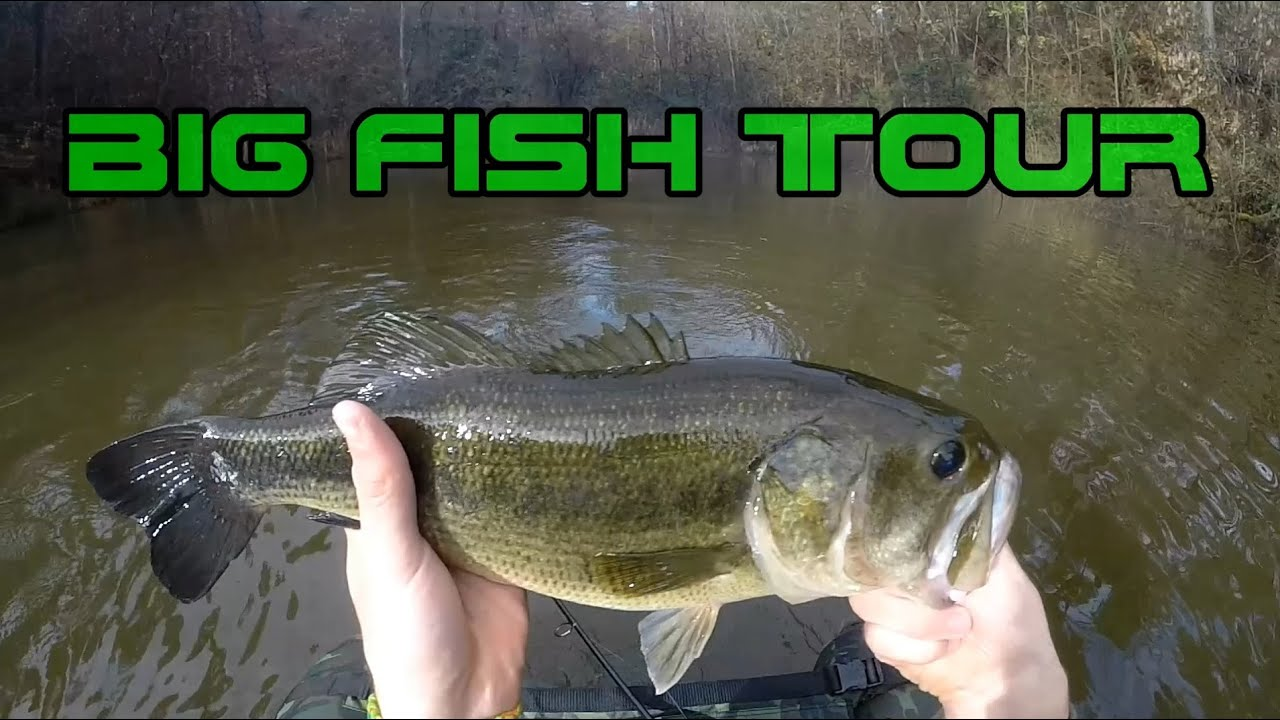 Big fish tour a black bass in inverno youtube for Watch big fish