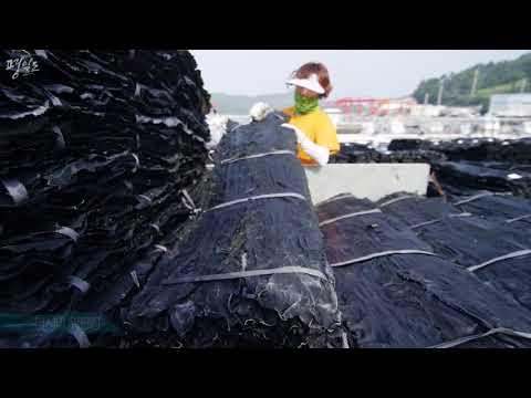 2018 완도군 금일도(평일도) 홍보 영상