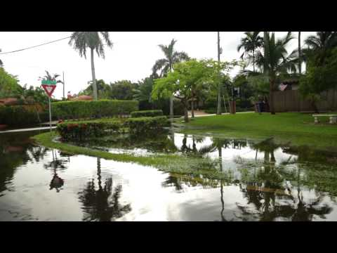 Tidal Flooding and Sea Level Rise: The Growing Impacts of Global Warming