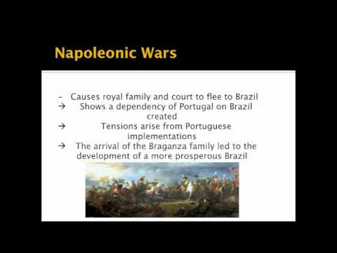 The brazilian independence movement essay
