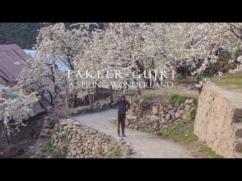 Fakeer Gujri | A Spring Wonderland | Travel Vlog | Kashmir