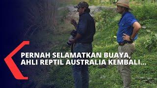 Pernah Selamatkan Buaya Berkalung Ban, Ahli Reptil Australia Ini Kembali Datang ke Indonesia