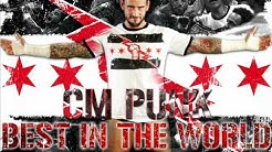 "Wwe: Cm Punk Theme ""The Cult Of Personality"" (HQ +DL)"