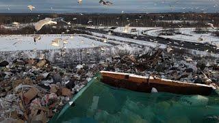 Городская мусорная свалка Санкт-Петербурга