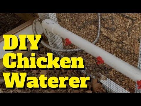 Building a DIY Chicken Waterer