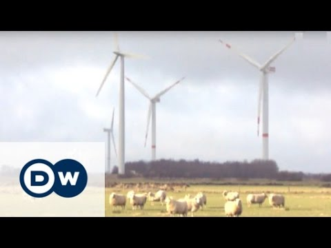 Harvesting the Wind - Ellhöft Wind Farm | Made in Germany