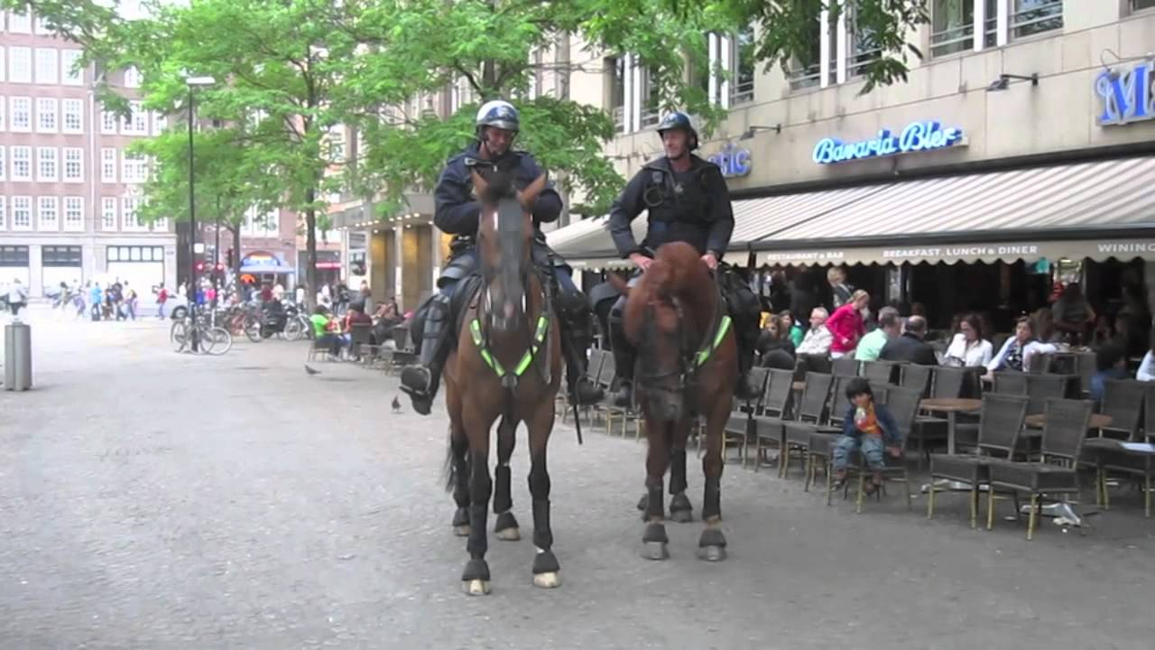 how to get from amsterdam airport to dam square