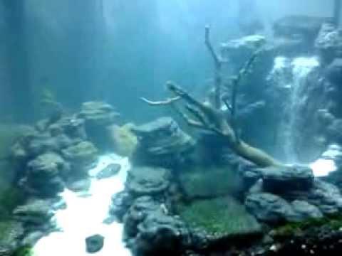 Air Terjun Aquascape Iroy Youtube