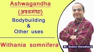 Ashwagandha Uses and Dose   Best medicine for Bodybuilding   Withania Somnifera