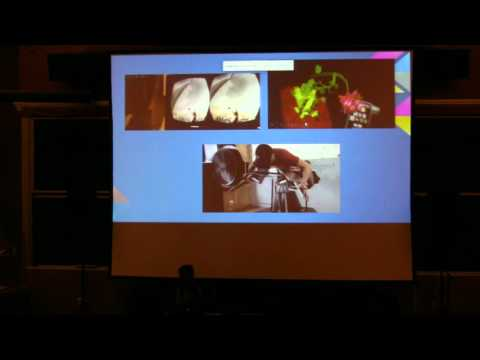 @party 2015 - Brian Peiris: VR, Live Coding, and The Web