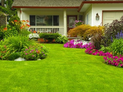 Landscaping Tips: 3 Ways to Keep Your Landscaping Green in the Summer -  YouTube