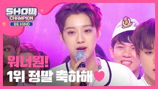 SHOW CHAMPION Special!