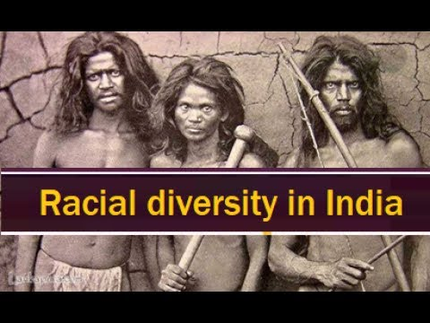 Racial groups in India || Indian History for Civil service exams || Racial diversity