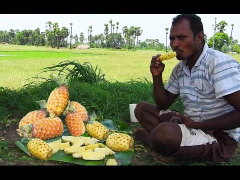 Natural Pineapple fruit cut and scraped n eatin' essence in my countryside with my friends