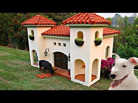 Aşırı Lüks 10 Köpek Kulübesi