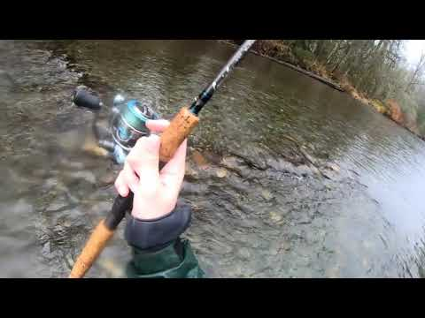 Chum Salmon Fishing The Green River (Washington)