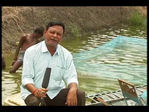 KRISHI DARSHAN (NARROWCASTING) - AADHUNIK VIDHI SE MACHHALI PALAN (D/T - 26.09.2016)