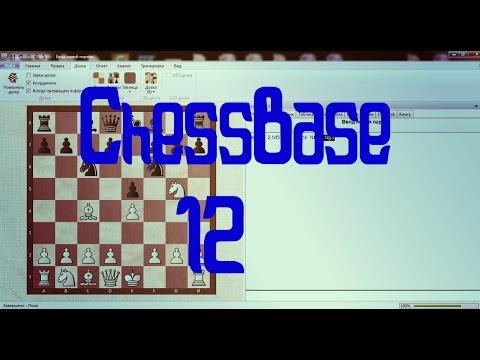 chessbase 14 русская версия скачать торрент