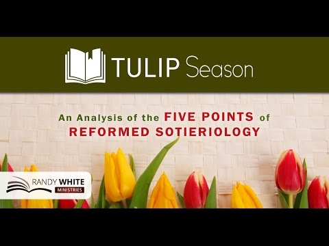 Total Depravity: The Achilles Heel of TULIP
