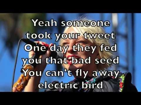 Sia - Electric Bird Karaoke Cover Backing Track + Lyrics Acoustic Instrumental