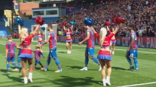 Video Gol Pertandingan Crystal Palace vs Schalke 04