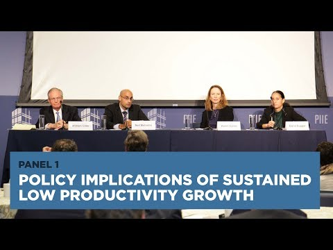 Policy Implications of Sustained Low Productivity Growth: Panel 1