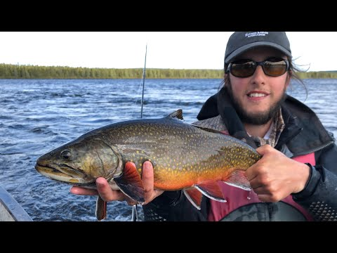 Fly Fishing In Labrador