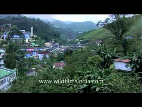 Munnar - a hill station on the Western Ghats of Kerala