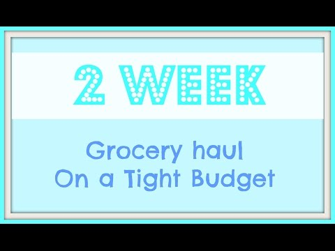 TWO WEEK GROCERY HAUL ON A TIGHT BUDGET