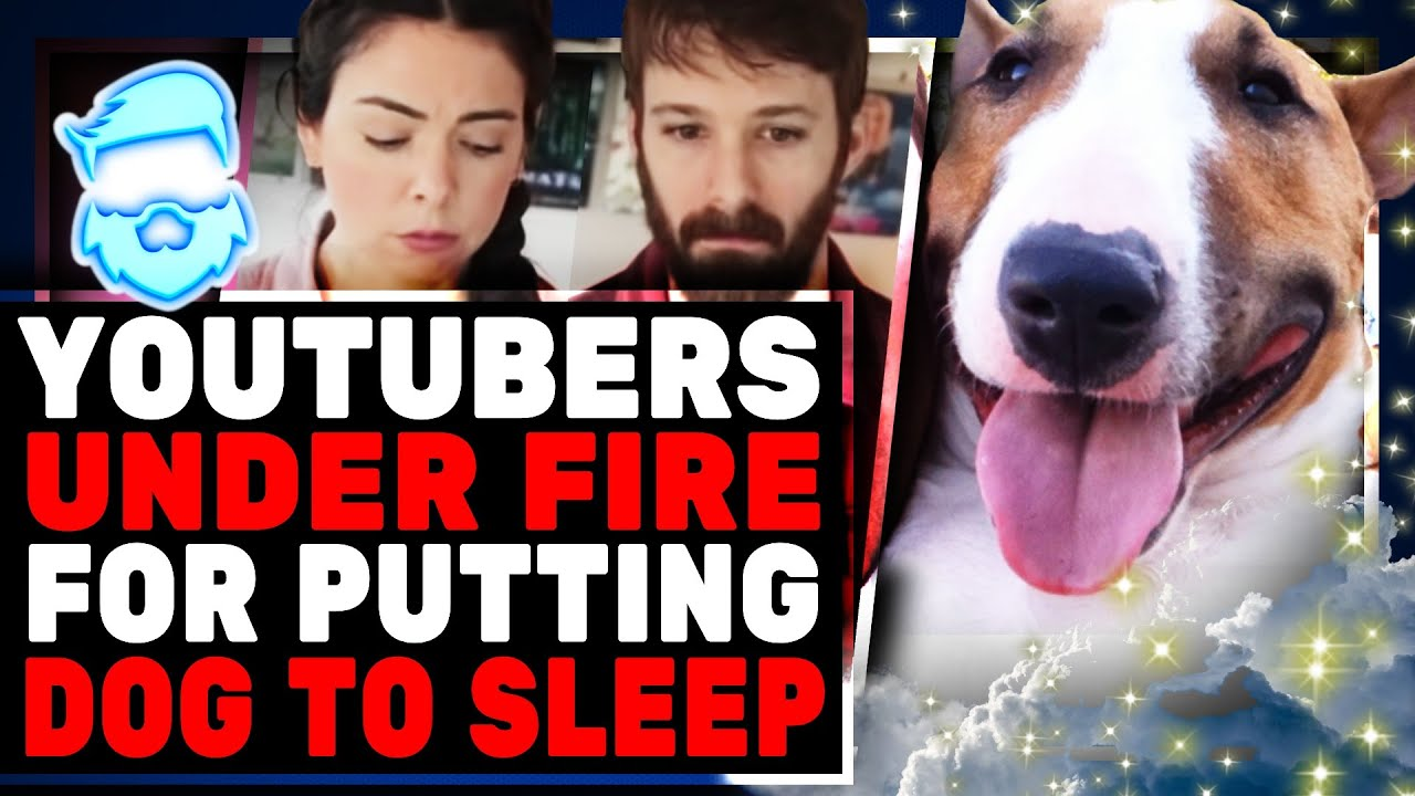 They Put Their Dog Down For Clout? Seriously Messed Up Youtubers Nikki & Dan Phillippi