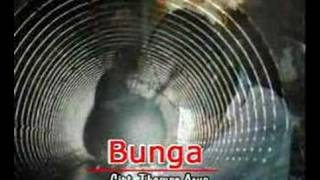 Thomas - Bunga MP3