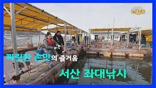 짜릿한 손맛의 즐거움 서산 좌대낚시 / YTN 라이프