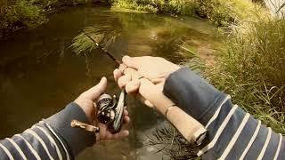 #18 • Окунь і плотва на мормишку спінінгом • лісова річка