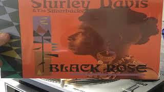Shirley Davis & The SilverBacks  Vanity