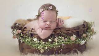 Lullaby Mozart Bedtime Music 🎵 Mozart for Babies Brain Development 🎵042