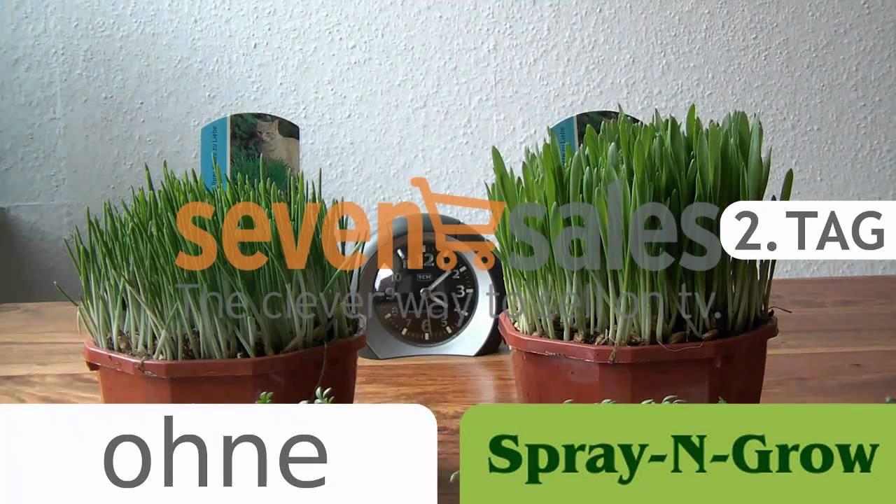 Sprayngrow Zeitraffer Wachsender Pflanzen Und Blumen Youtube
