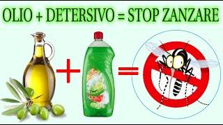 trappola per zanzare, come eliminare definitivamente le zanzare a costo zero, stop zanzare