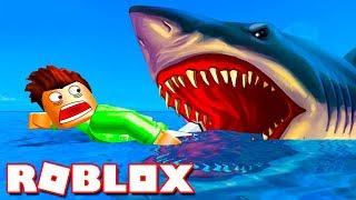 Побег от АКУЛЫ в ROBLOX! Кид на корабле охотиться на большую рыбу в Роблоксе #КИД