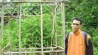 Download lagu Angin Babah Nang Timuru MP3