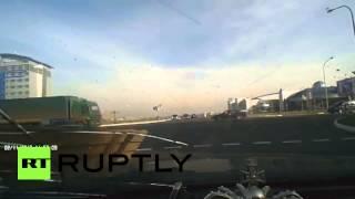 видео Котострофа: как домашние животные убивают автомобили