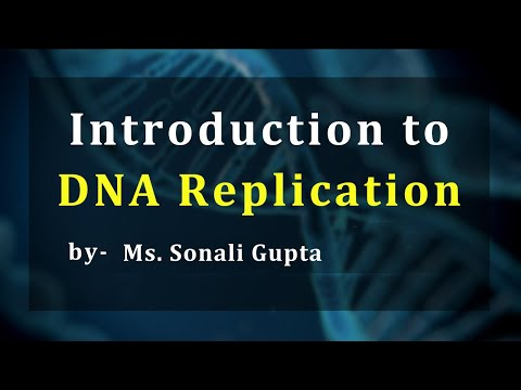What is DNA Replication(B.Sc, M.Sc)