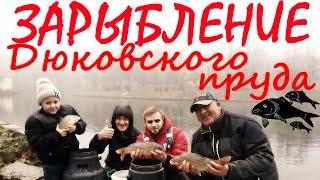 Зарыбление пруда в Дюковском Парке Карп карась более 200 килограмм рыбы выпускаем в пруд