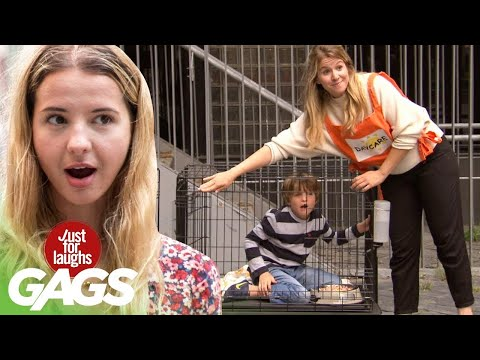 new-age-daycare-keeps-its-kids-in-cages