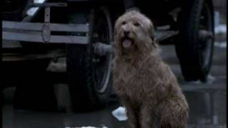 Video Annie (1999) - Part 3/10 download MP3, 3GP, MP4, WEBM, AVI, FLV November 2017