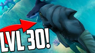 Feed And Grow Fish - LEVEL 30 BEAST, GREAT WHITE HUNTING (Gameplay)